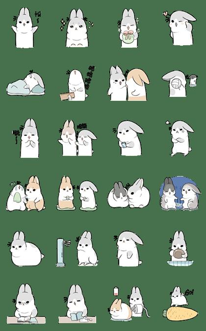 Kawaii Machiko Rabbit