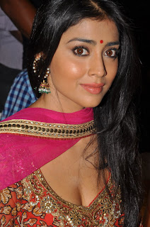 Shriya at Endukante Premanta Audio Launch Function