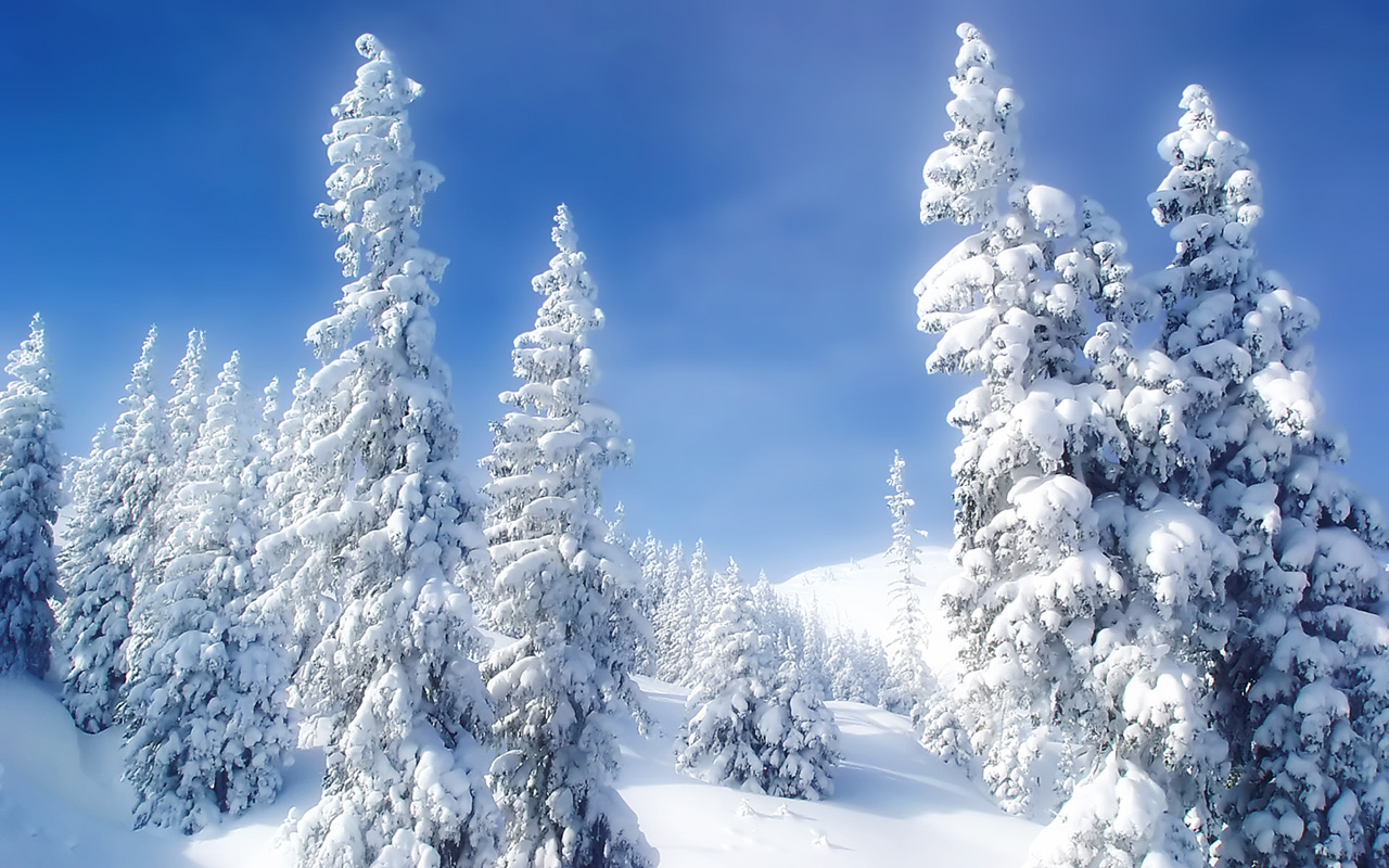Winter wallpapers hd winter wallpapers hd Beautiful snowfall pictures