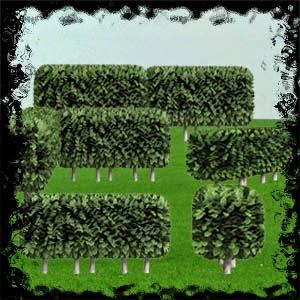 http://4.bp.blogspot.com/-pYw1gchAJYU/VVzpwGztLlI/AAAAAAAADMM/7FwwLGJoQ0w/s1600/Mgtcs__HedgeBushes.jpg