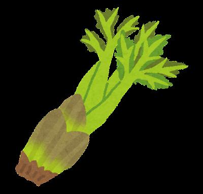 タラの芽のイラスト