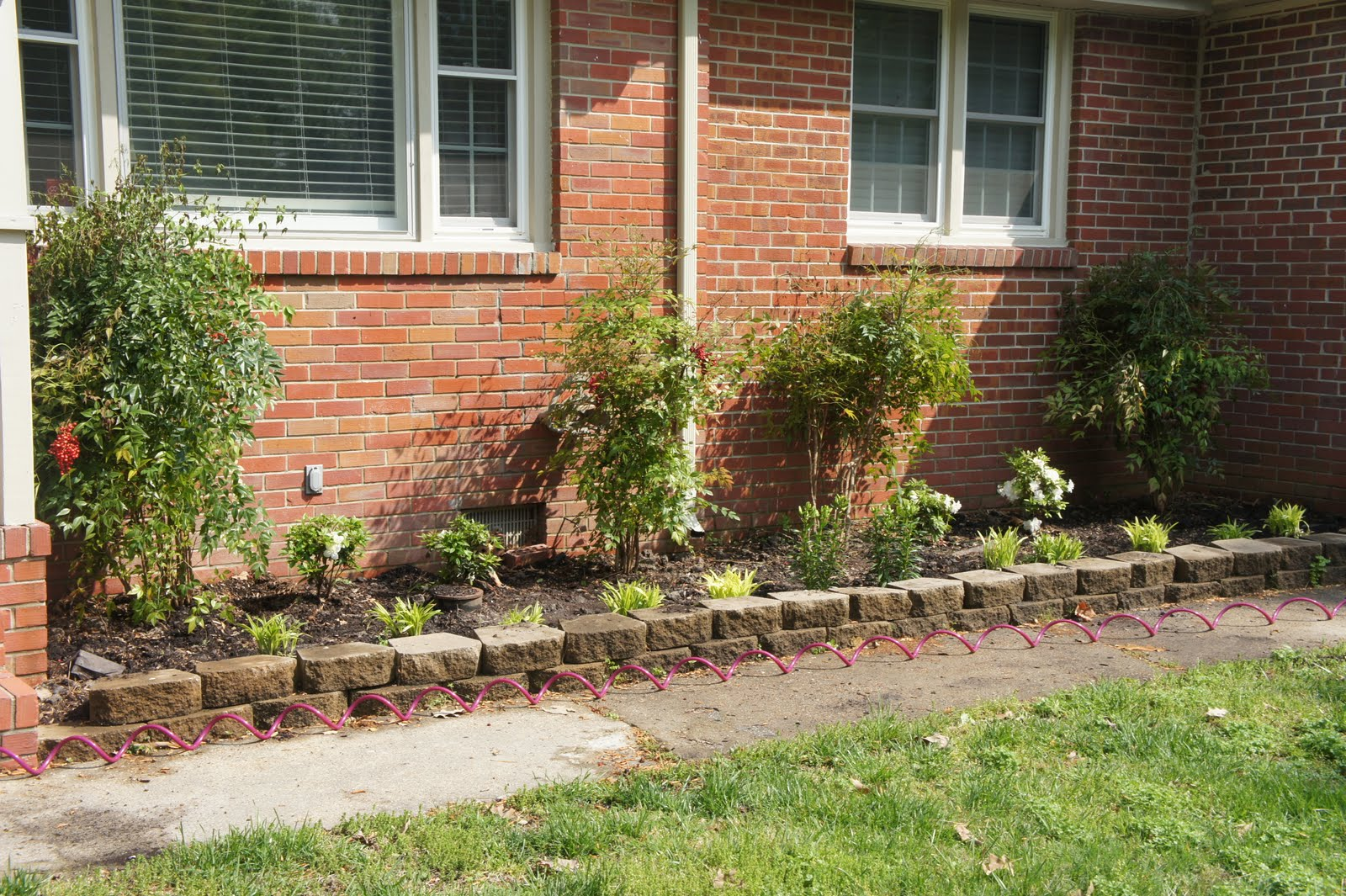 Landscaping landscaping for dummies for Landscaping for dummies