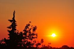 Abendsonne...