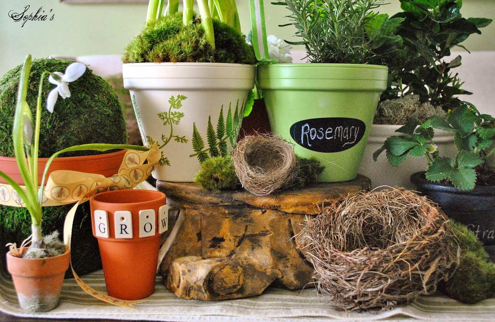 Sophia\'s: DIY Spring Clay Pots & Michaels Pinterest Party