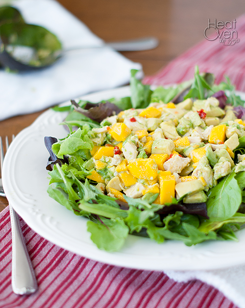 Mango Chicken Avocado Salad