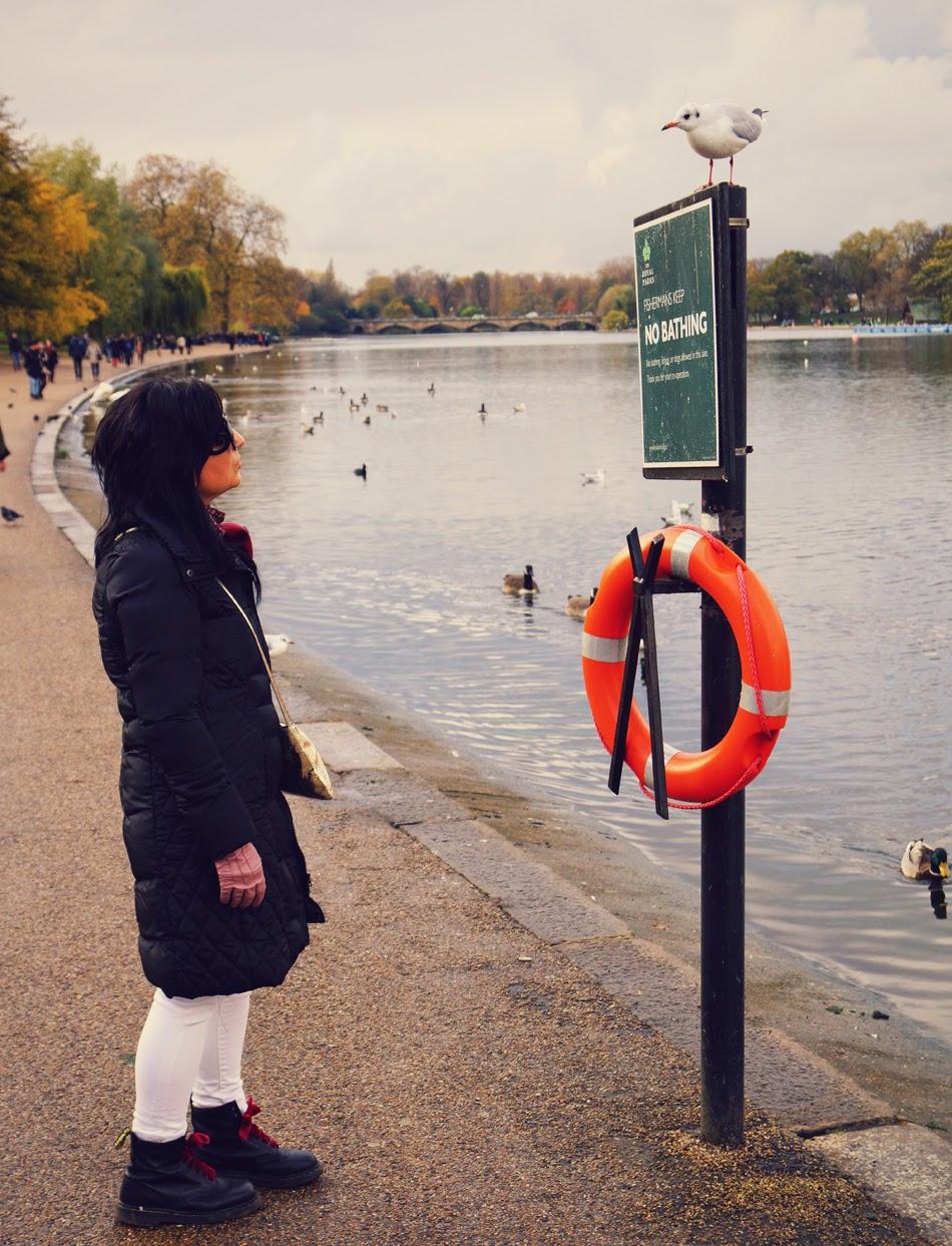 Lago+Serpentine+Hyde+Park+Londres