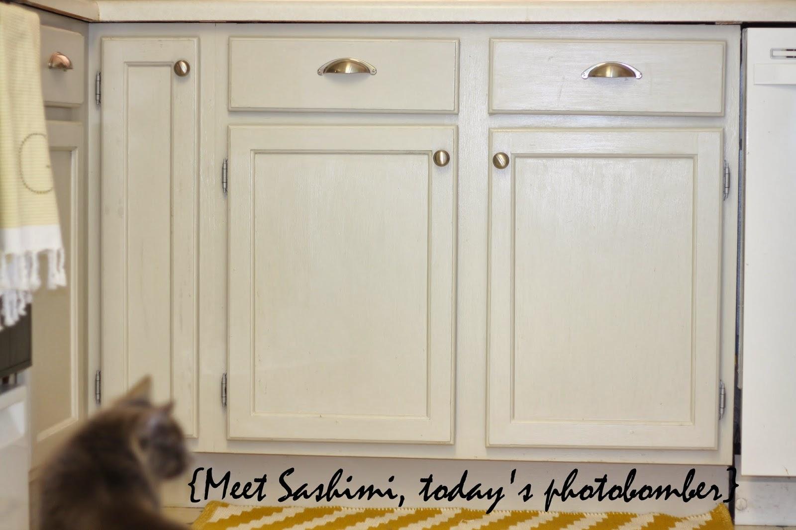 Maison Blanche Paint Kitchen Cabinets