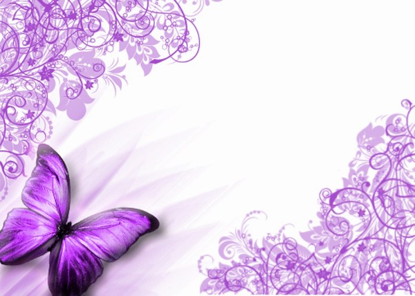 Purple Butterfly Images HD Background