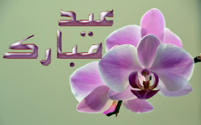 Purple Flowers Eid ul Adha Mubarak Cards Images 2012 Urdu Text 3