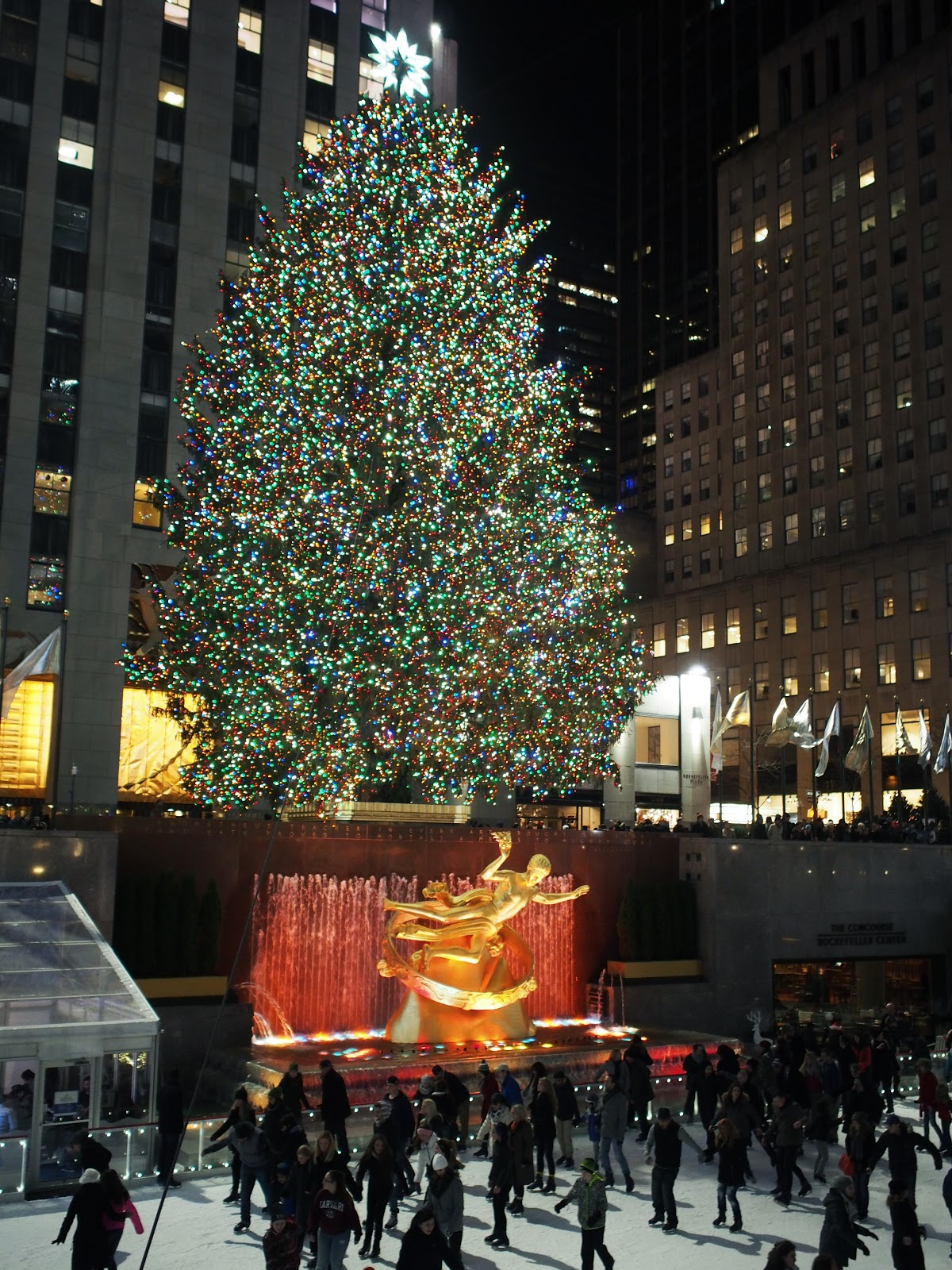 #RockCenter Tree - 2014 #RockCenterTree2014  #holidays #holidaysinNYC #rockefellercenter #NYC ©2014 Nancy Lundebjerg