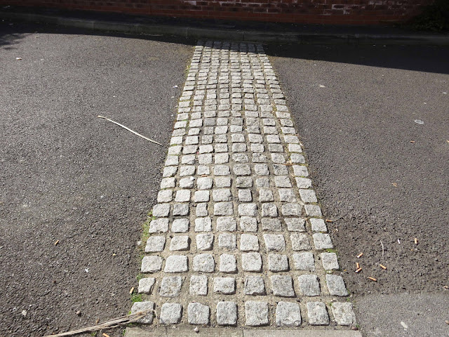 Speed bump. There are lots of tiny plants between the cobbles.