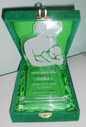 Juara 1 Lomba Balita Sehat di Hermina, Depok