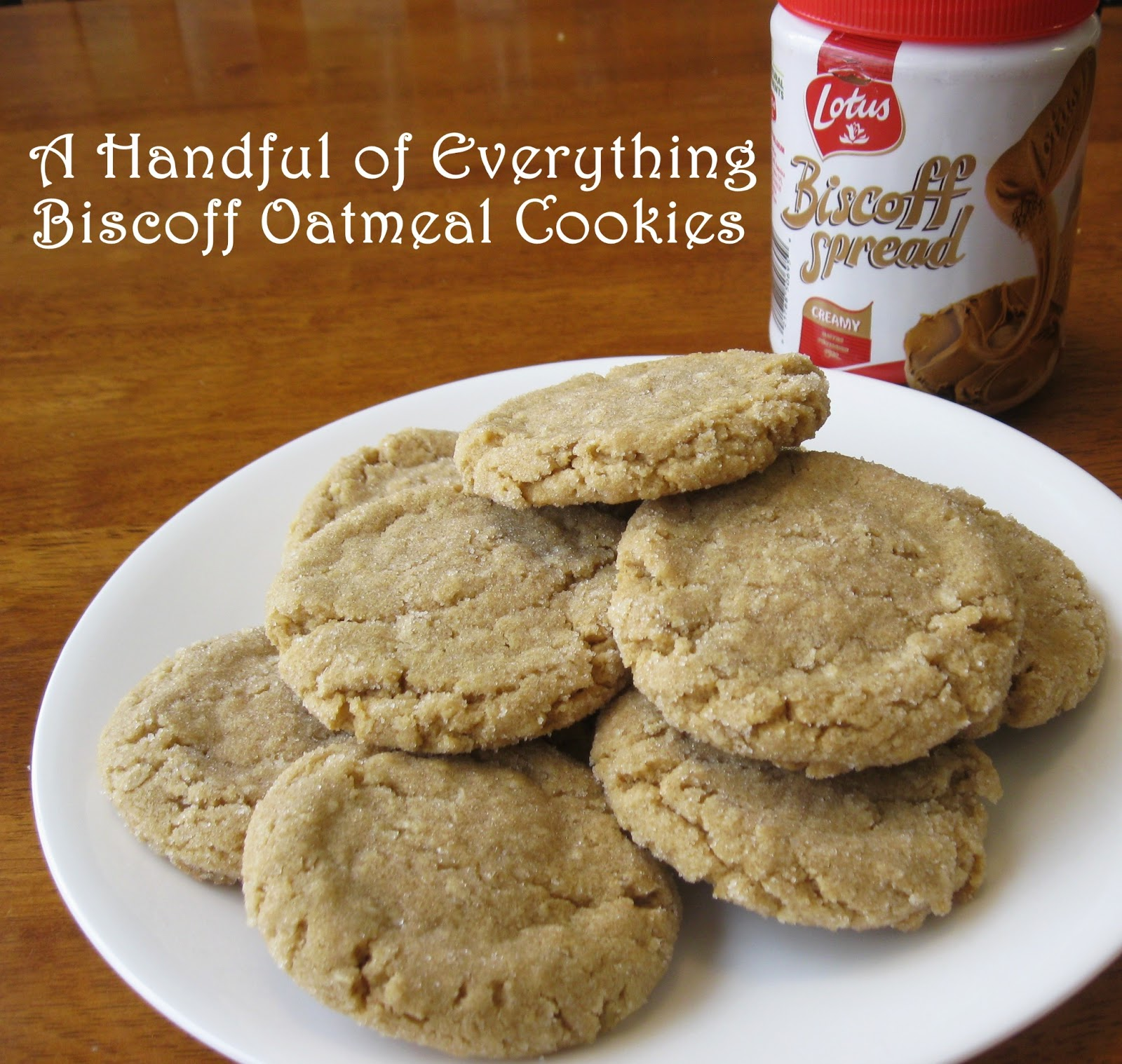 oatmeal cookies the best oatmeal cookies biscoff oatmeal cookie ...