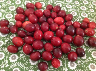 cranberries on a colorful green napkin