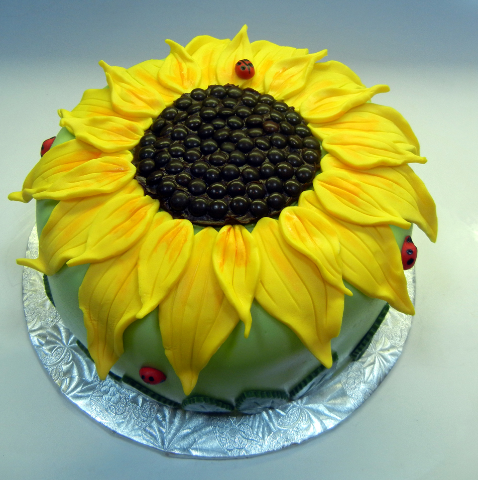Chocolate Cake Made Like A Sunflower