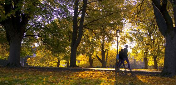 University of Idaho campus in the fall