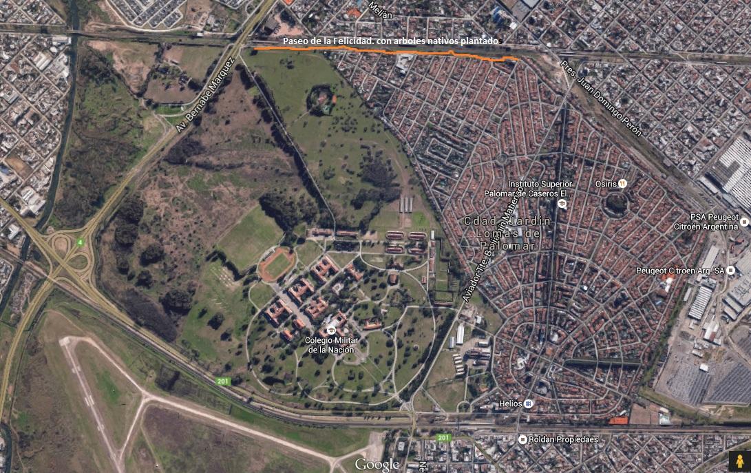 Aves de mi tierra catita chirir brotogeris chirir for Casas en ciudad jardin el palomar
