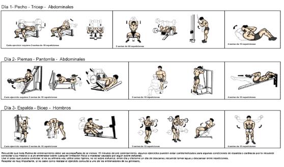Rutinas en casa gym body perfect - Rutinas para casa ...