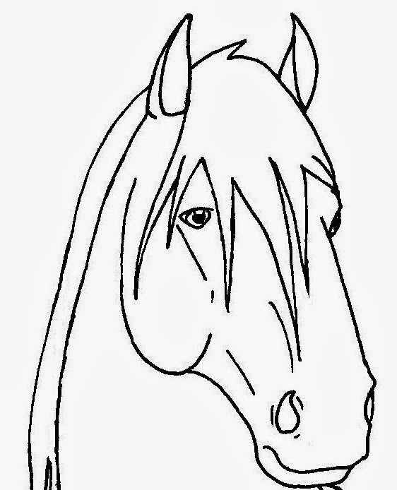 Horse Face Line Drawing : Horse face template