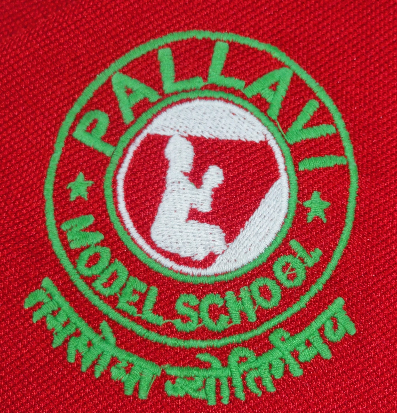 Pallavi Model School Logo Pallavi Model School Alwal