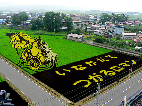 Tanbo Art