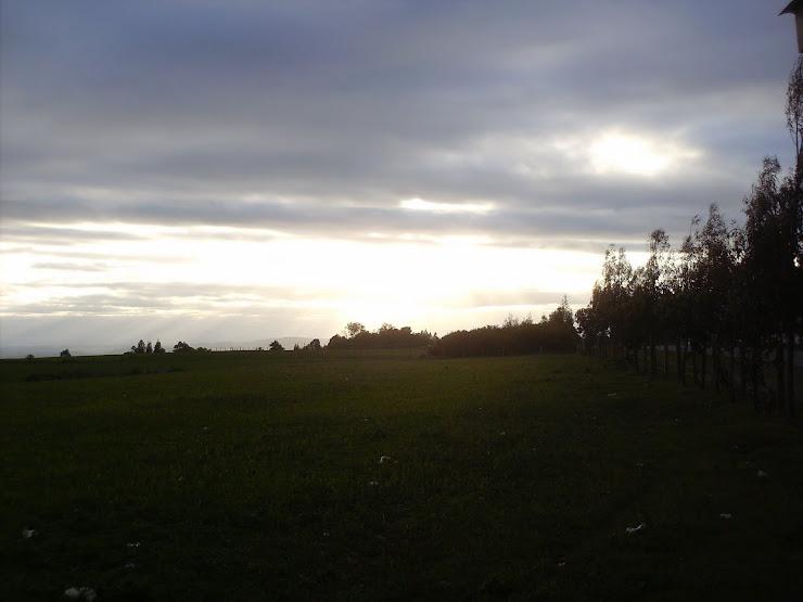 paisajes desde la parcela