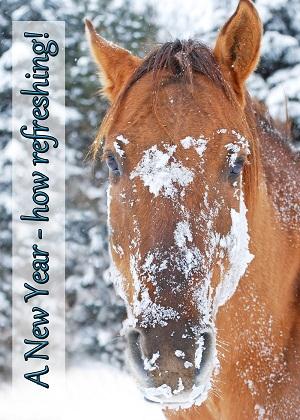 happy new year horse
