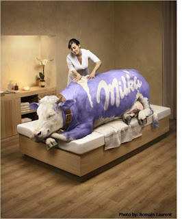 Milka Cow massage