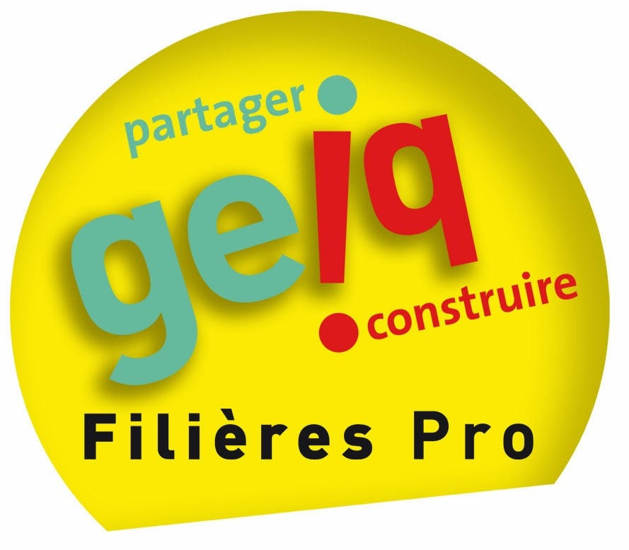 comit u00e9 r u00e9gional des geiq de nouvelle aquitaine  pole
