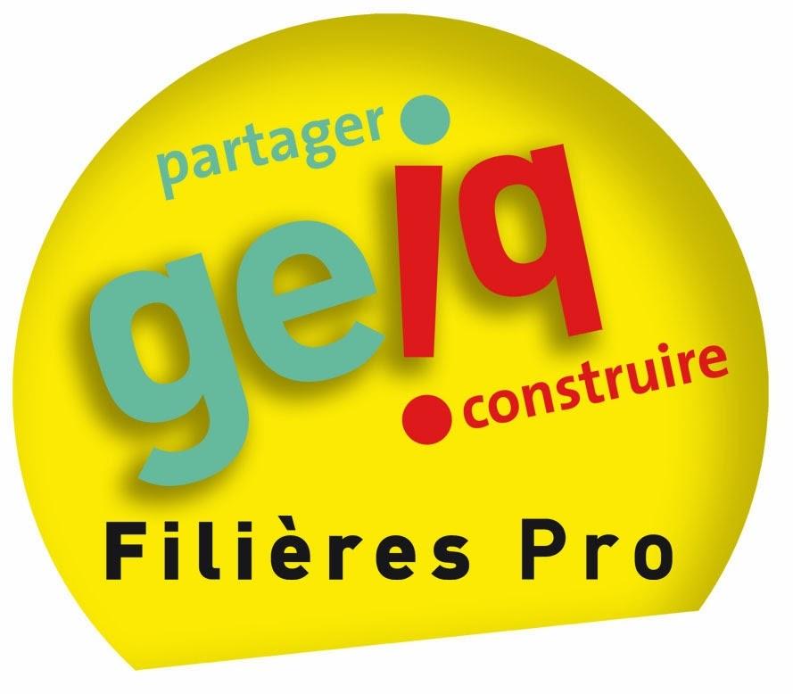 le blog du comit u00e9 r u00e9gional des geiq de nouvelle aquitaine  pole