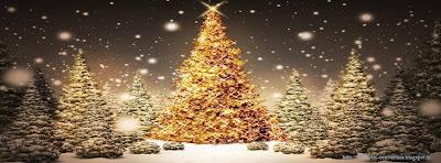 Couverture facebook Beauté Sapin de Noël