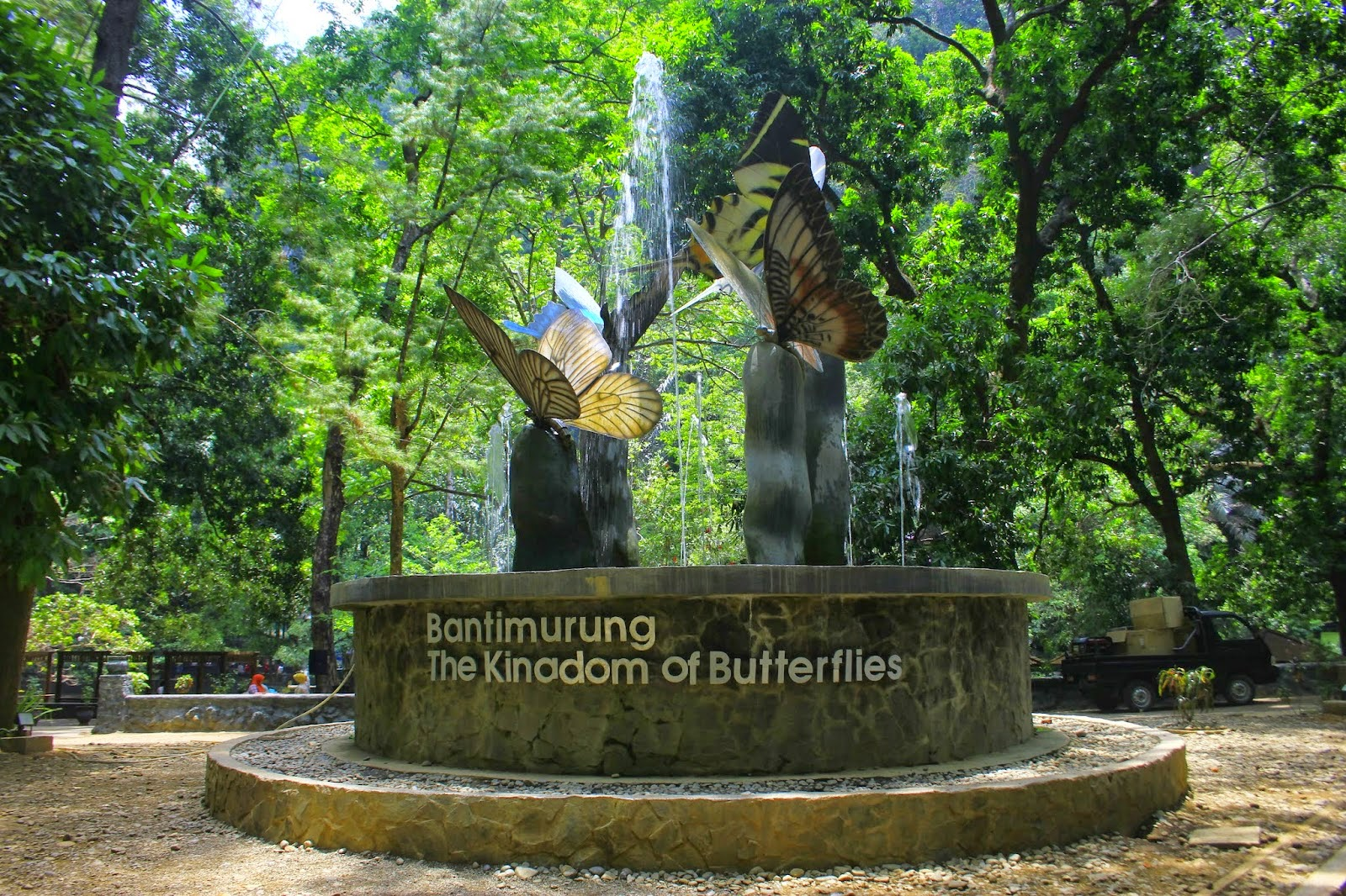 The Kingdom Of Butterfly