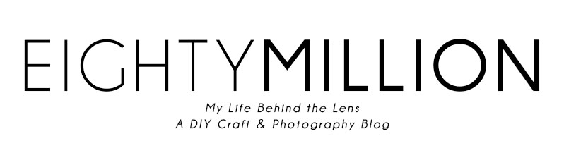 Eightymillion-A DIY craft and photography blog. Dogs included.