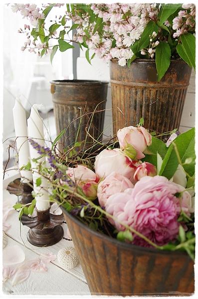 mein lillys living rose ohne namen. Black Bedroom Furniture Sets. Home Design Ideas