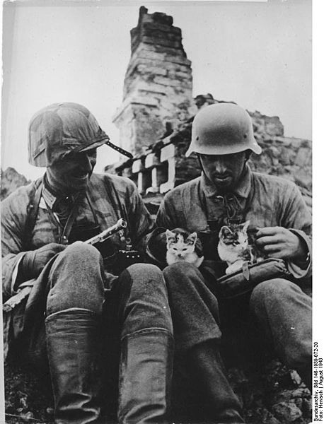 36 Amazing Historical Pictures. #9 Is Unbelievable - Two german soldiers with kittens (1943)
