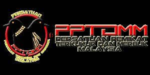 PPTDMM