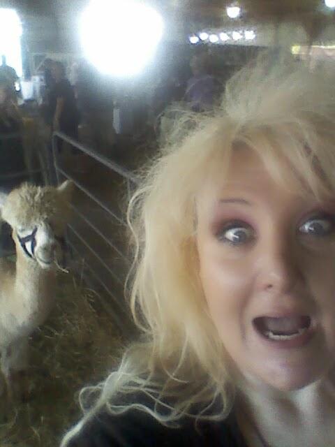 Alpaca!