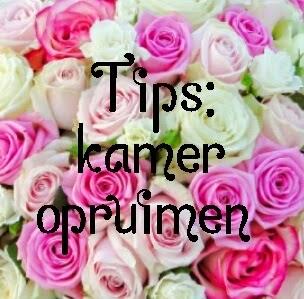 Everything is beauty tips kamer opruimen for Tips opruimen