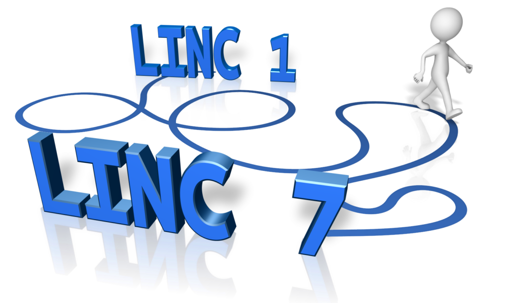 LINC Classes