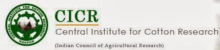 CICr Nagpur Job Vacancy Sep 2013