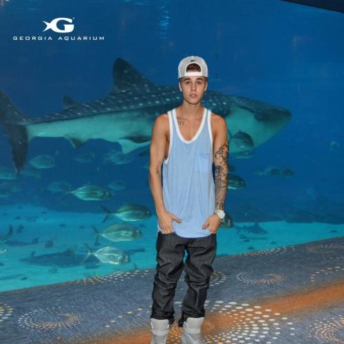 ... : Georgia Aquarium publica imagem da visita de Justin Bieber ao local