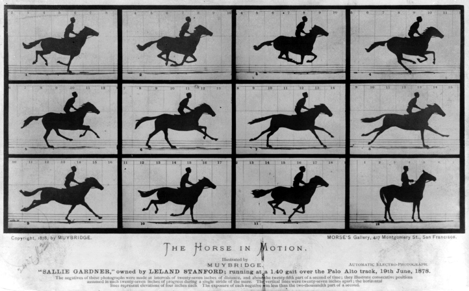 The First Motion Picture Ever Made - The Horse In Motion (1878)