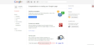 example of google+ pages