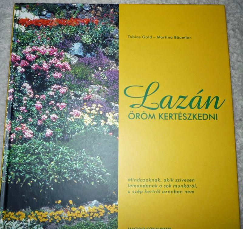 Lazán...