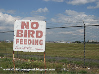 birdstrike+feeding+sign.jpg