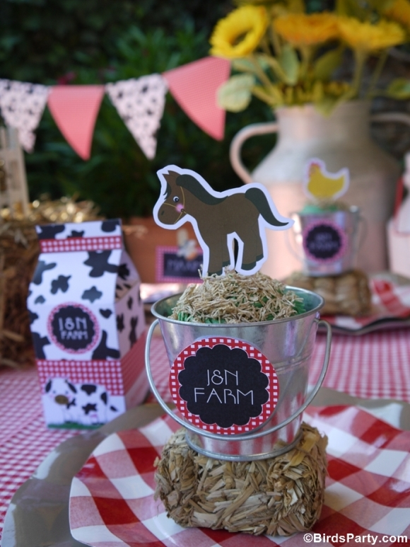 Diy barnyard party cupcakes for Animal party decoration