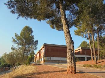 Escola Àngel Guimerà de Pallejà