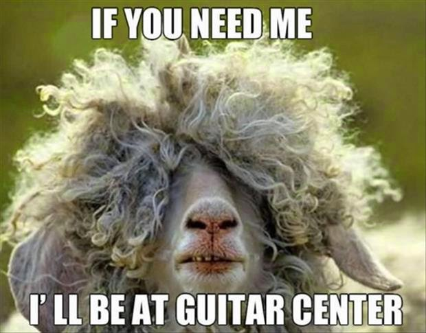 30 Funny animal captions - part 21 (30 pics), captioned animal pictures, emo sheep