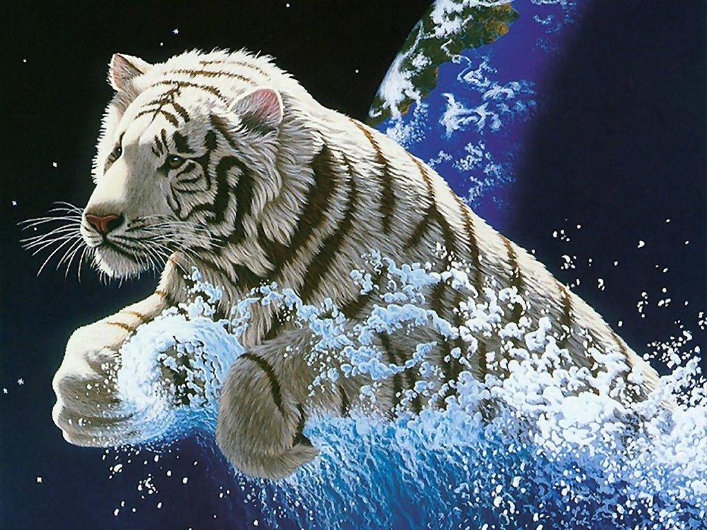 best animal zoo: animal wallpaper - world top 10 wallpaper
