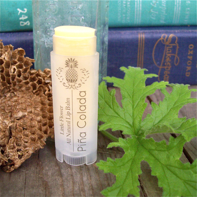 all natural lip balm pina colada lip balm beeswax lip balm shea butter lipbalm chapstick made in michigan lip balm detroit ann arbor natural body care beeswax shea butter natural organic rustic farmhouse lipbalm